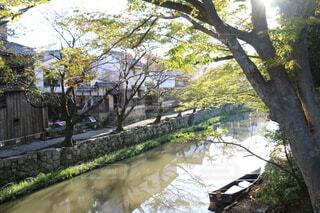 八幡堀の写真・画像素材[3829374]