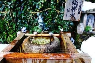 竹生島の写真・画像素材[4073717]