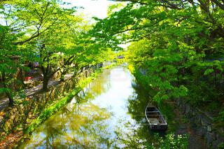 八幡堀の写真・画像素材[4362482]
