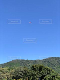 空にひとりぼっちの写真・画像素材[3489707]