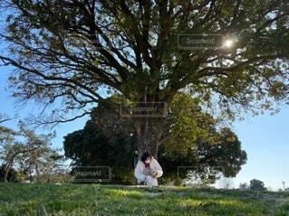 公園木の根元にいる女性の写真・画像素材[4218157]