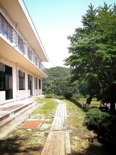 校舎の外観の写真・画像素材[3522659]