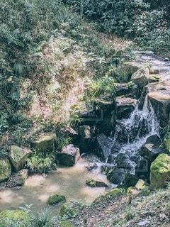滝の写真・画像素材[3589539]