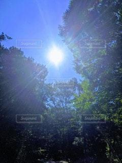 太陽☀の写真・画像素材[3589538]