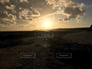 海辺の夕陽と猫の写真・画像素材[3526881]