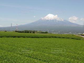静岡県の写真・画像素材[3531261]