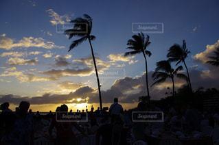 夕日の写真・画像素材[150771]