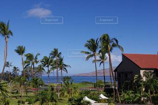 ハワイの写真・画像素材[150773]