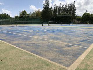 草や木のある空とテニスコートの写真・画像素材[3506843]