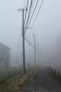 朝のドライブの一枚の写真・画像素材[3520610]
