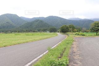 山道の側に木がある道の写真・画像素材[3609431]