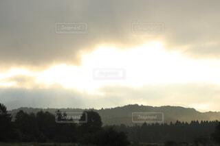 森の中の雲の写真・画像素材[3647505]