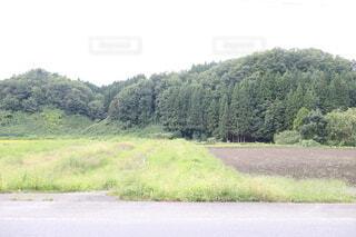 田舎道のクローズアップの写真・画像素材[3688036]