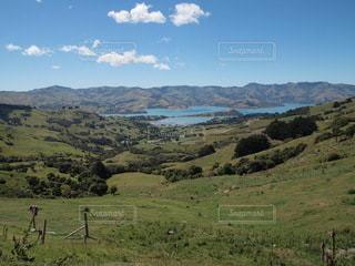 背景に山のある大きな緑の畑の写真・画像素材[3526484]