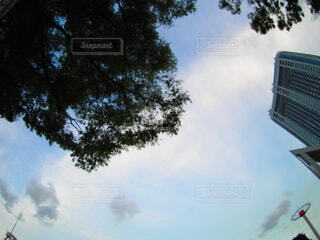 空を広角レンズでの写真・画像素材[3720762]