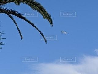 真夏の空の写真・画像素材[3593021]