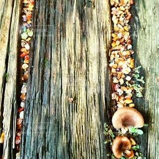 天然石の道です。の写真・画像素材[3677471]
