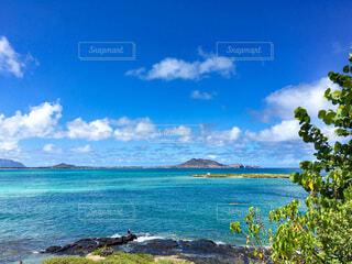 ハワイオアフ島の美しいビーチの写真・画像素材[3680426]