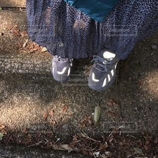 春の散歩の写真・画像素材[3547692]