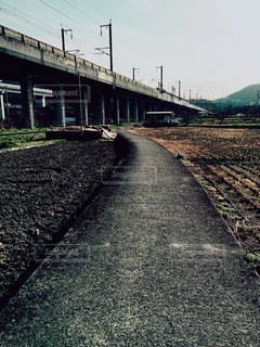 道の写真・画像素材[151078]