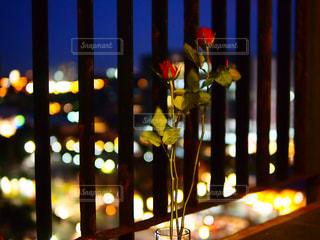花の写真・画像素材[344503]