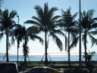 海の写真・画像素材[370142]