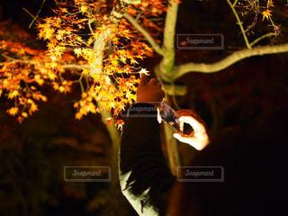 紅葉を撮る人を撮る人の写真・画像素材[901255]