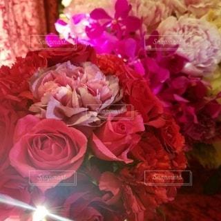 花のクローズアップの写真・画像素材[3582371]