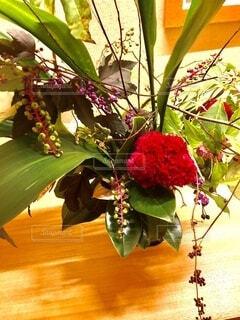 木に花の花瓶の写真・画像素材[3674450]
