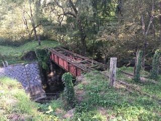 山中の廃鉄橋の写真・画像素材[3586185]
