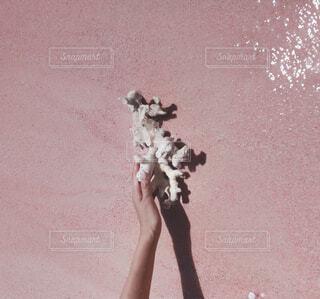 ピンク色のビーチの珊瑚礁の写真・画像素材[4114523]