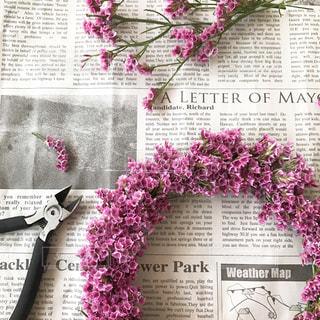 近くの花のアップの写真・画像素材[755381]