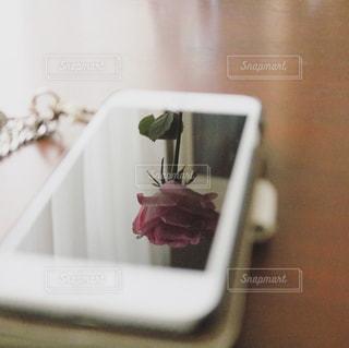 白い花瓶がテーブルの上のピンクの花でいっぱいの写真・画像素材[876460]