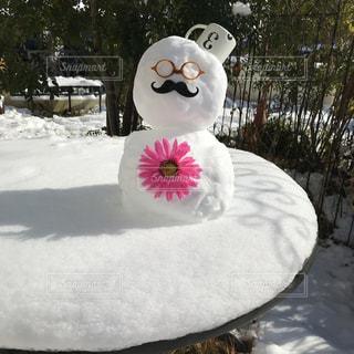 雪の中にクマの像の写真・画像素材[972729]