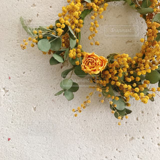 近くに黄色い花のアップの写真・画像素材[978921]