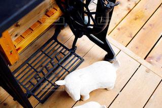 木製のベンチの上に横たわっている犬の写真・画像素材[1444009]