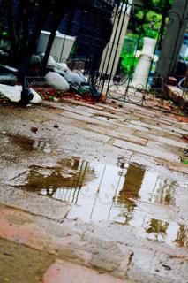 雨の写真・画像素材[2852408]