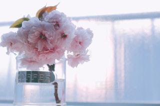 テーブルの上の花瓶をクローズアップするの写真・画像素材[2852407]
