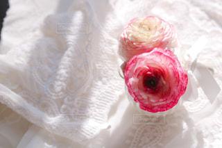 ピンクと白のケーキの写真・画像素材[2894021]