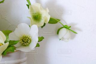 テーブルの上の花瓶に花束の写真・画像素材[3286532]