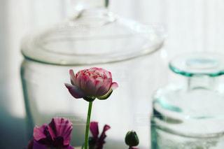 テーブルの上に座る花で満たされたガラスの花瓶のクローズアップの写真・画像素材[3286563]