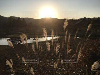 秋の夕暮れの写真・画像素材[3870622]