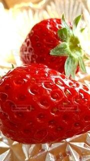 イチゴの季節の写真・画像素材[4107616]