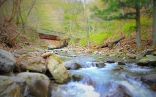 山の中の小川の写真・画像素材[3590360]