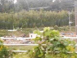 水害復興願いの写真・画像素材[3673077]