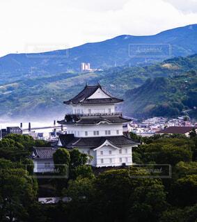 雨上がりの小田原城の写真・画像素材[4508823]