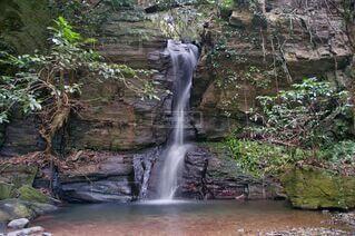 滝の流れの写真・画像素材[3841342]