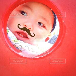 髭男爵の写真・画像素材[3619110]