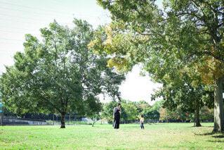 公園の写真・画像素材[3619119]