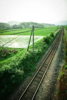 緑豊かな野原を通る列車の写真・画像素材[3646354]